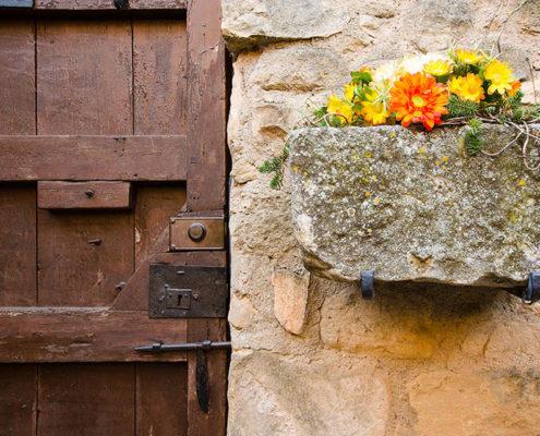 Disseny pàgines web Tarragona Pla del Castell