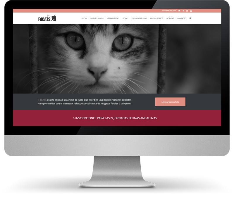 FdCATS imatge monitor